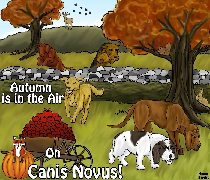A Canine Sim Game